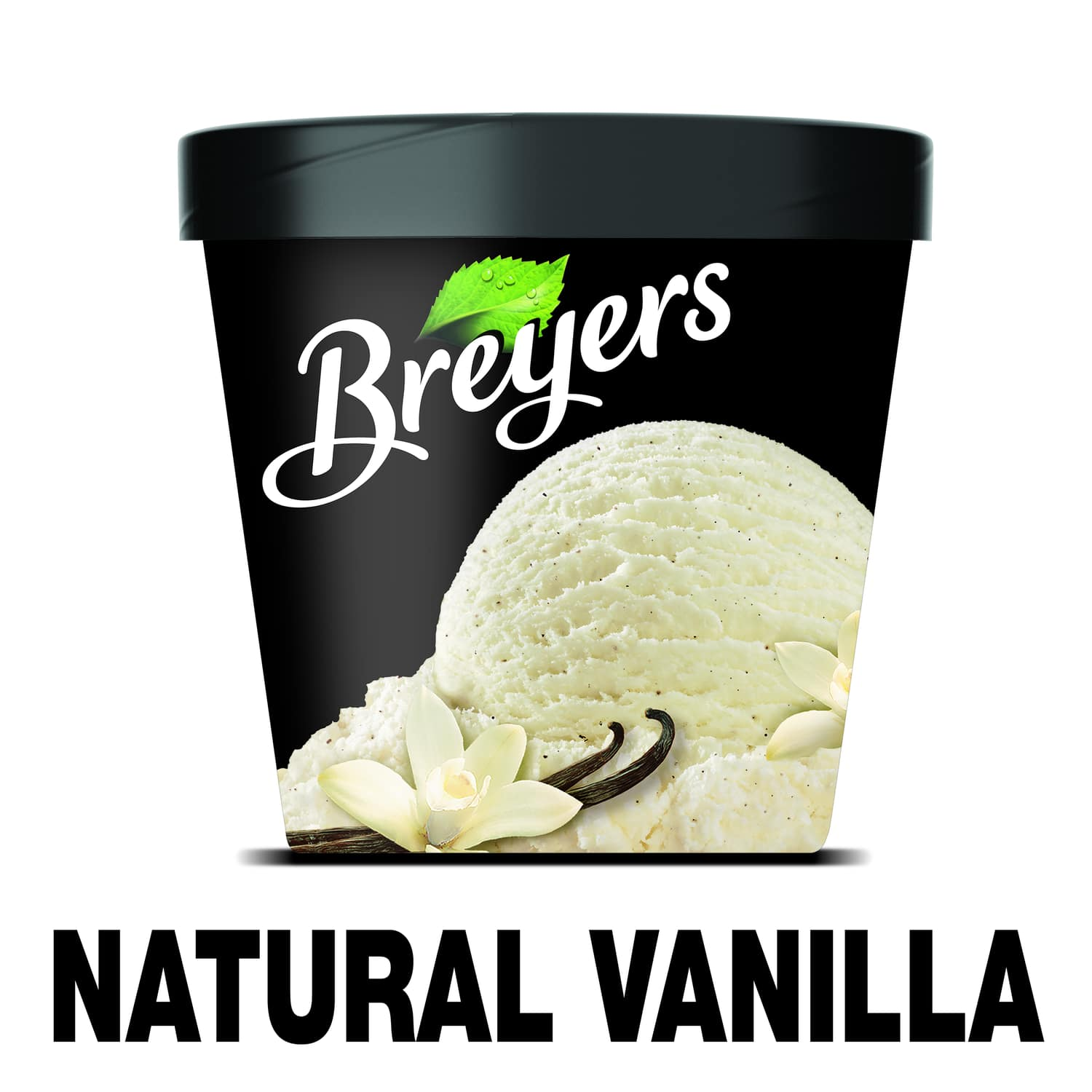 A 16 ounce tub of Breyers Natural Vanilla simple pack image